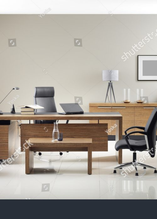 stock-photo-vip-office-furniture-289780904